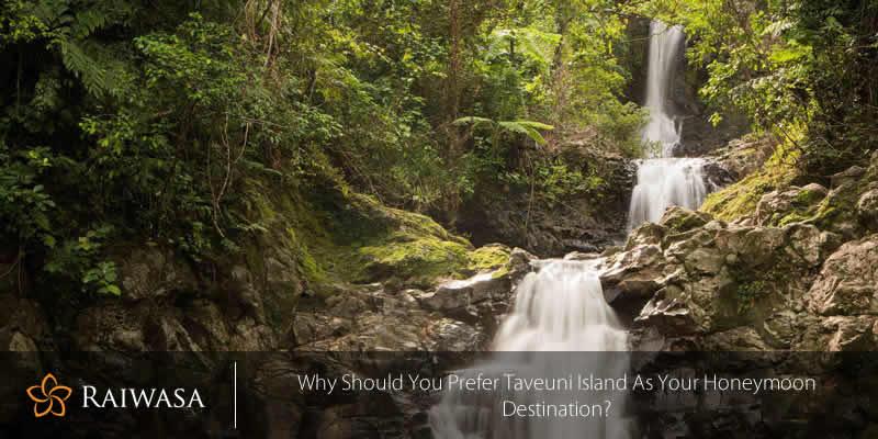 Why Should You Prefer Taveuni Island as Your Honeymoon Destination?
