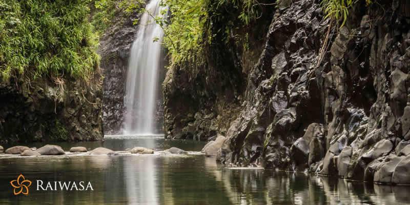 Fiji's Best Kept Secret A Walk Through Taveuni Island